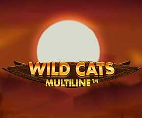 wildcats Multiline